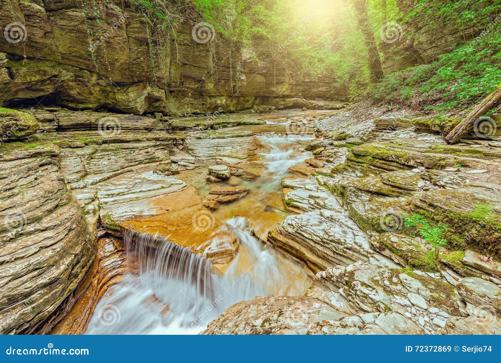 小河用在深峡谷的纯净的水