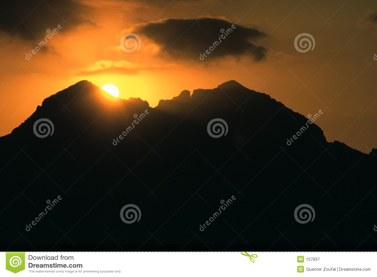 小海湾直棂日落