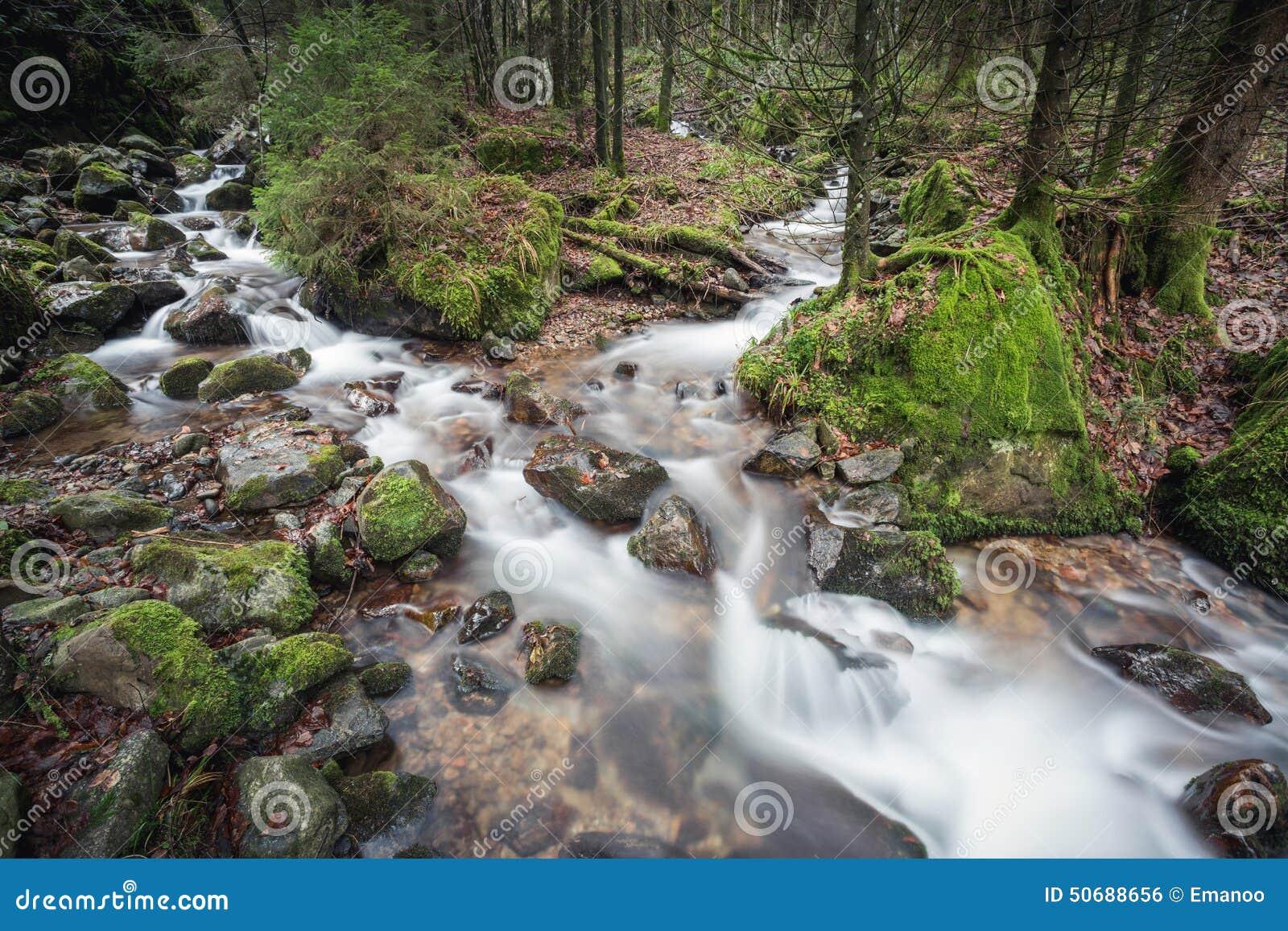 Download 小溪在黑森林,德国里 库存照片. 图片 包括有 石头, 风景, 生气勃勃, 飞溅, 级联, 自然, 投反对票 - 50688656