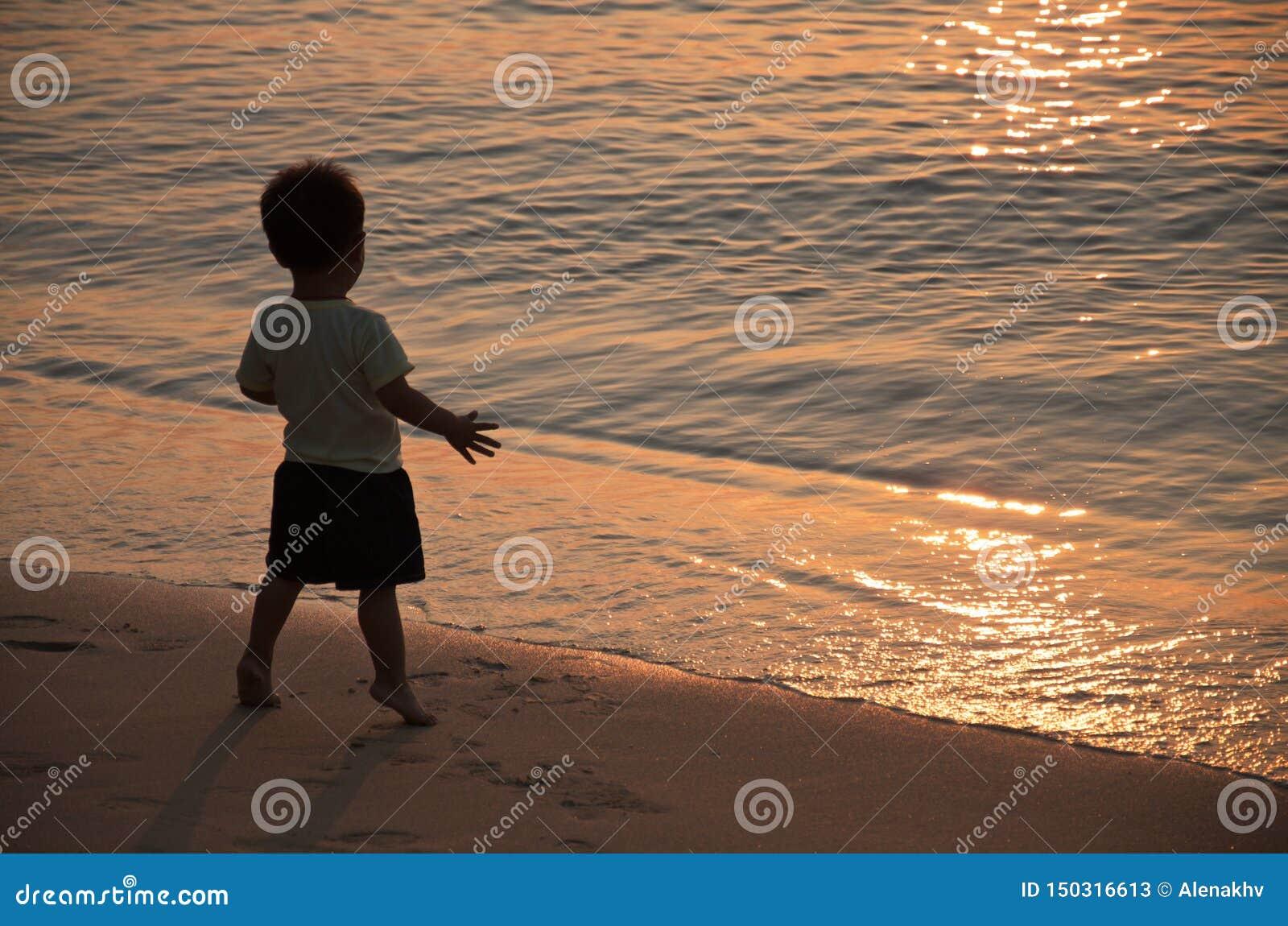 小男孩在日落的光芒的海滨站立