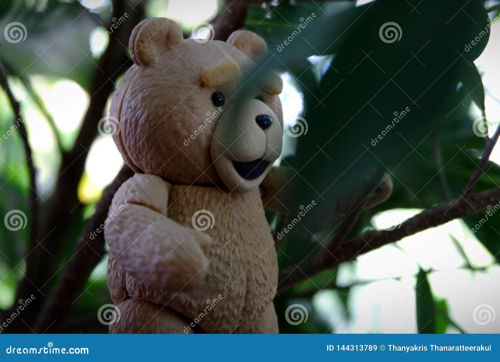 小的熊发现叶子