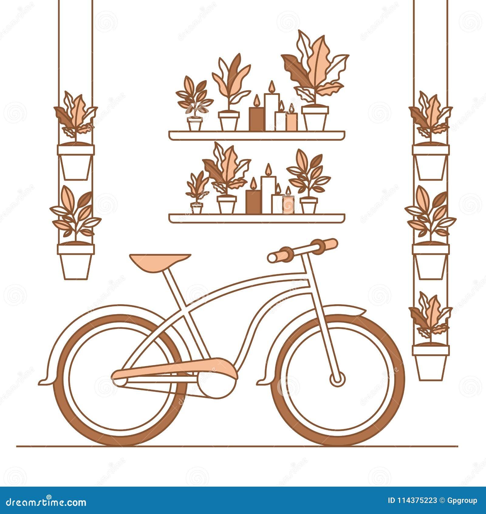 小组室内植物和自行车家庭装饰