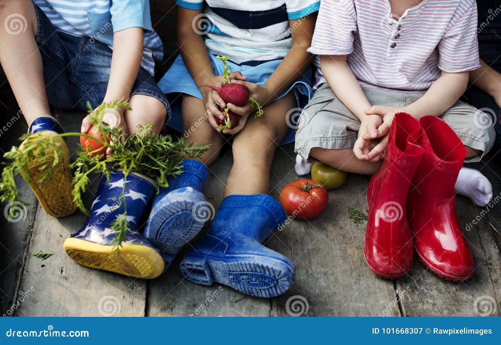 小组幼儿园哄骗学会从事园艺的小农夫