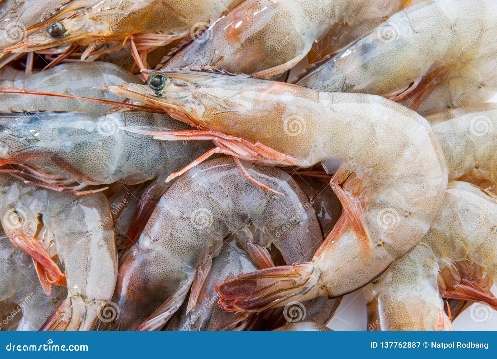 小组新鲜的虾大虾海鲜红色皮肤大虾vannamei