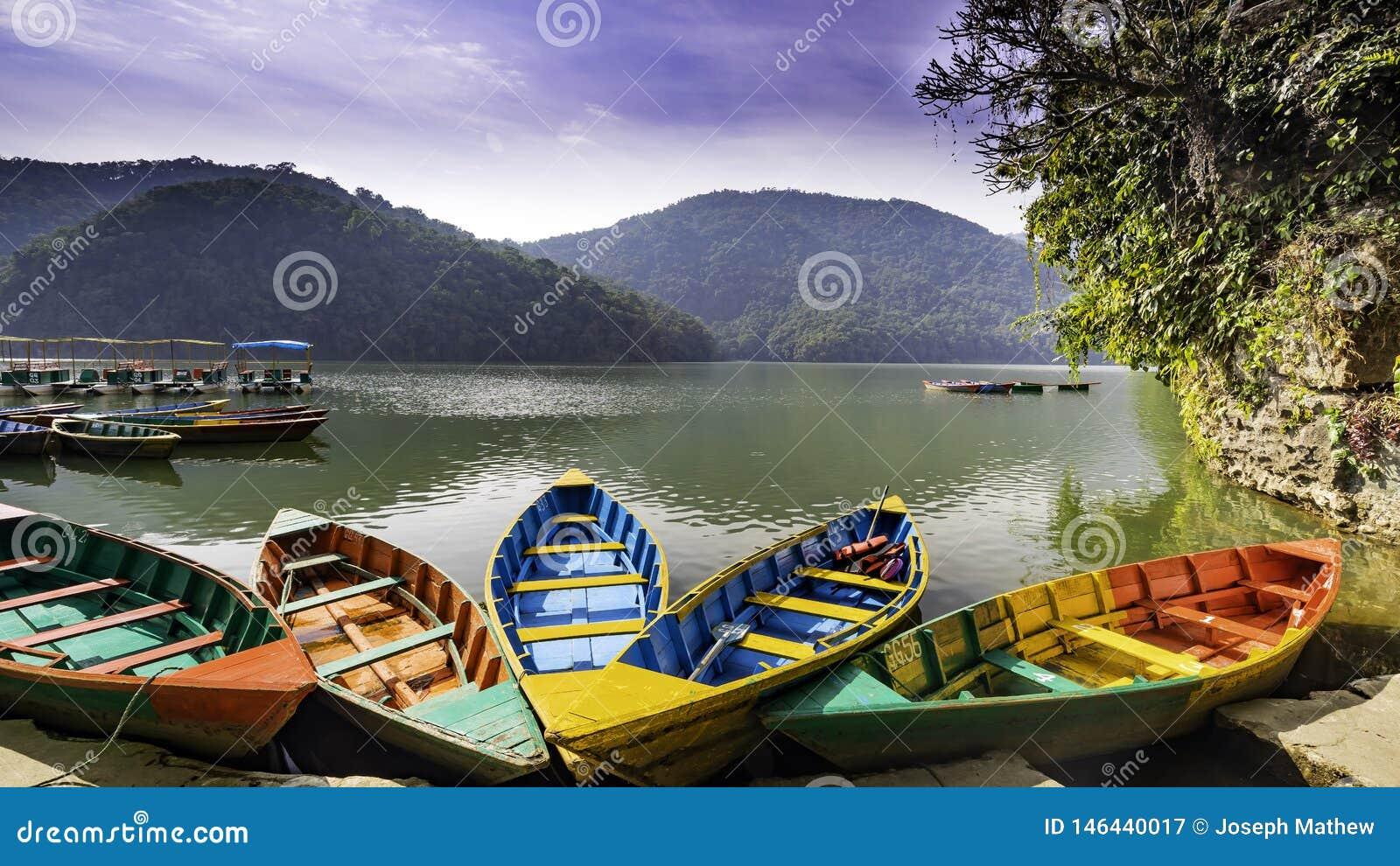 小船在Phewa湖博克拉尼泊尔