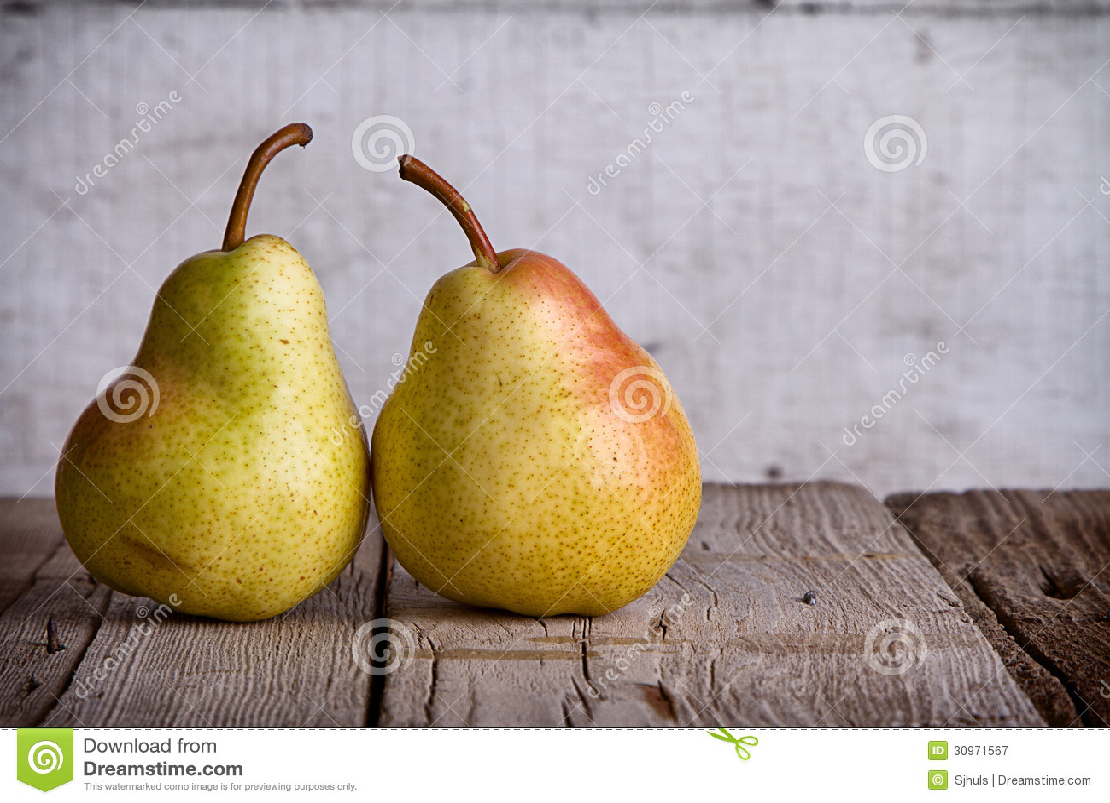 小组在木头的梨