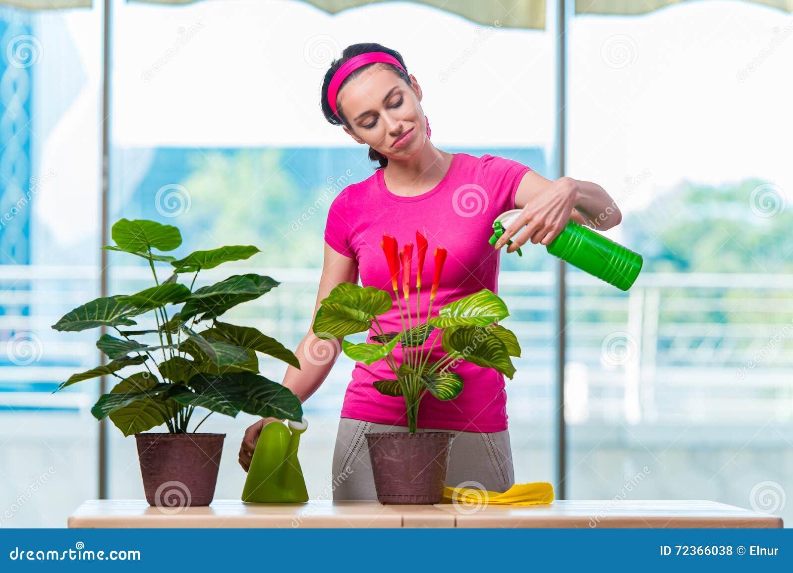 少妇照料家庭植物