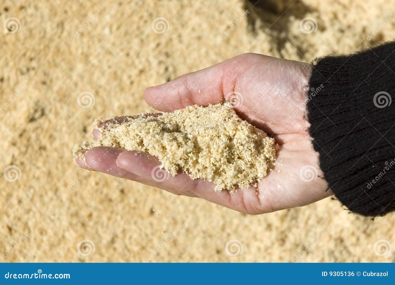 尘土现有量藏品看见了