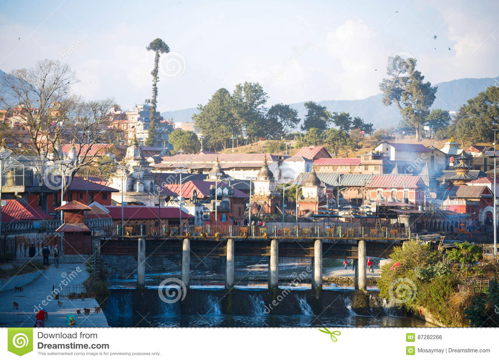 尼泊尔- 2017年1月4日: :印度火葬在Pashupatina的尼泊尔