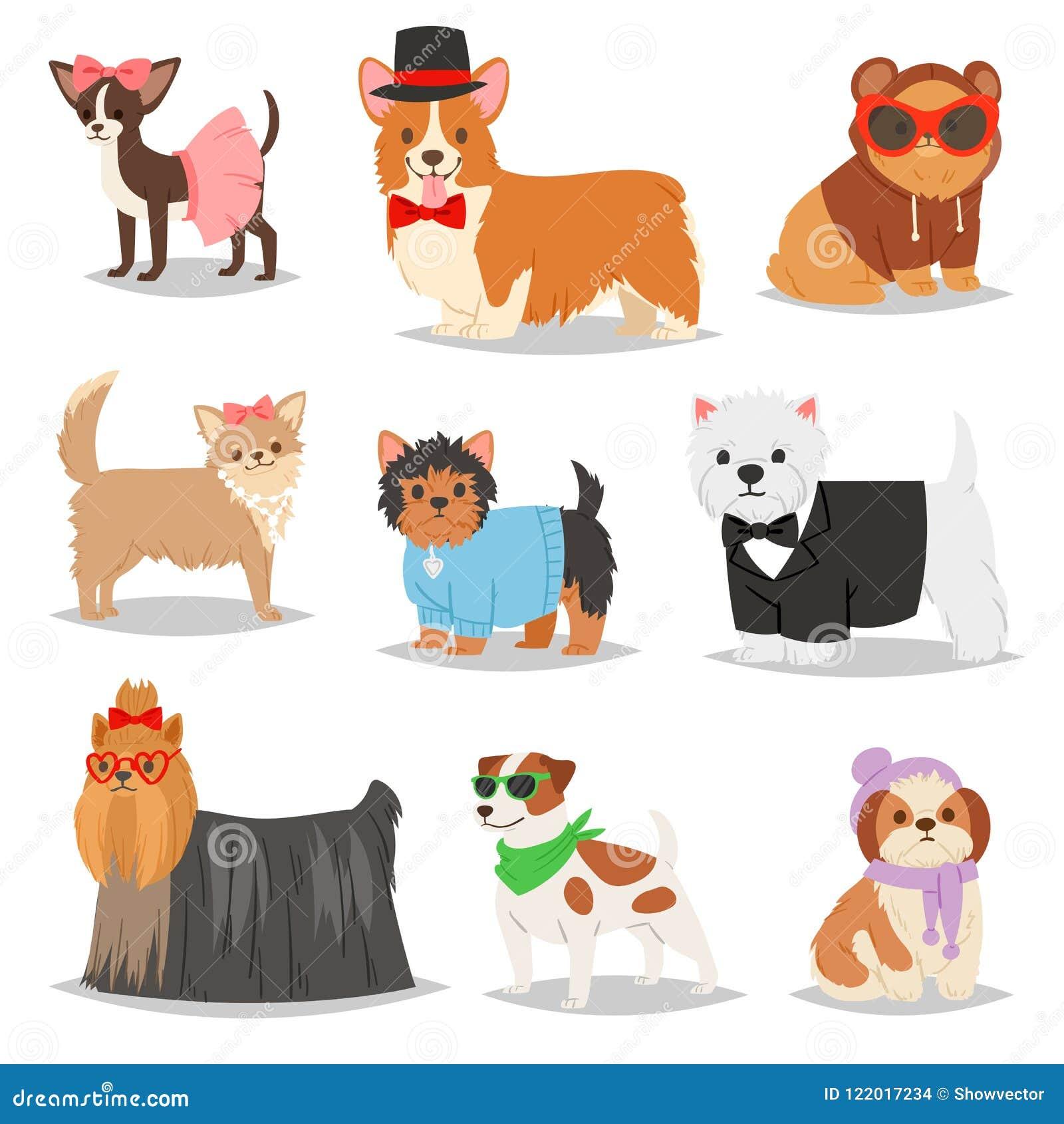 尾随传染媒介小狗宠物在国内狗饲养例证狗一样套似犬衣物的小狗字符