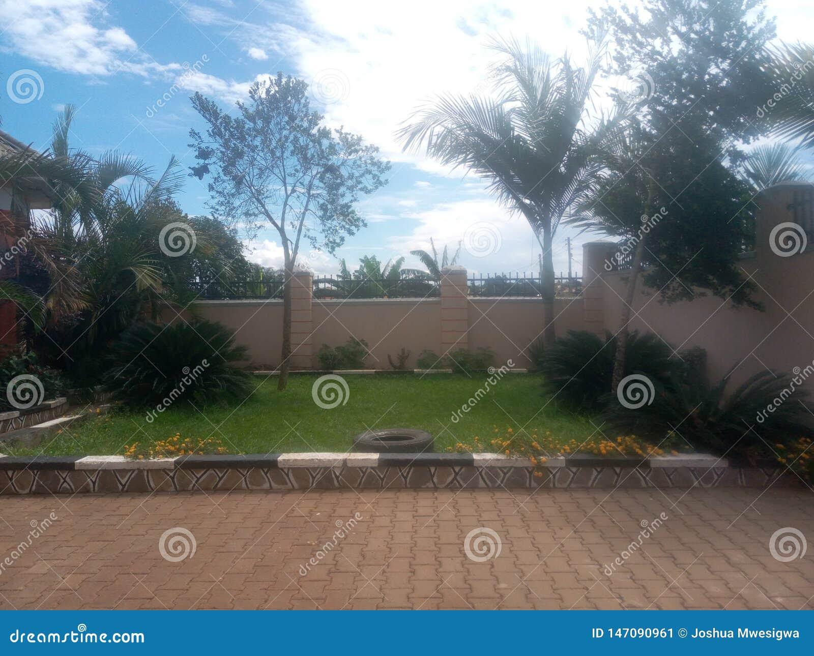 局限的家的小被铺的庭院