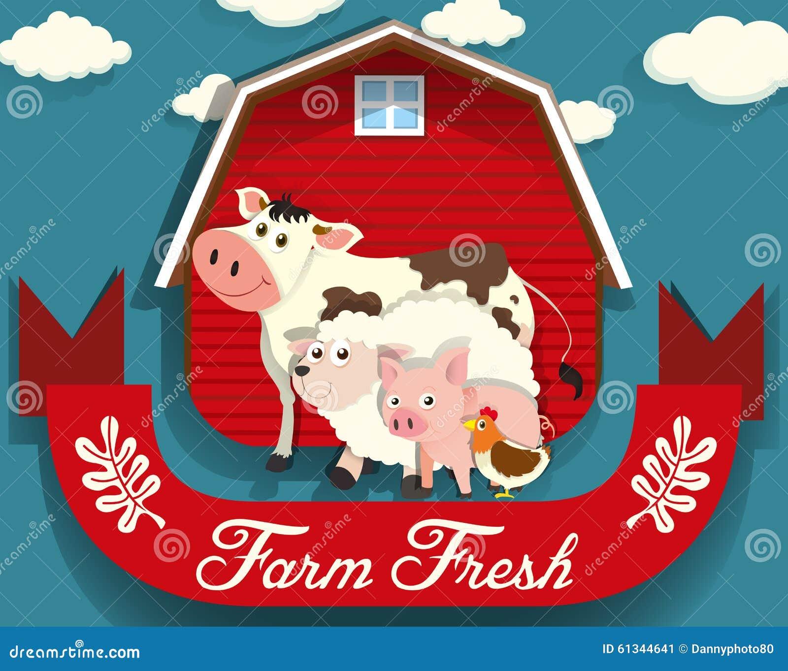 居住在农场的牲口
