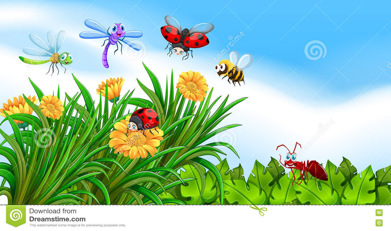 居住在庭院的昆虫