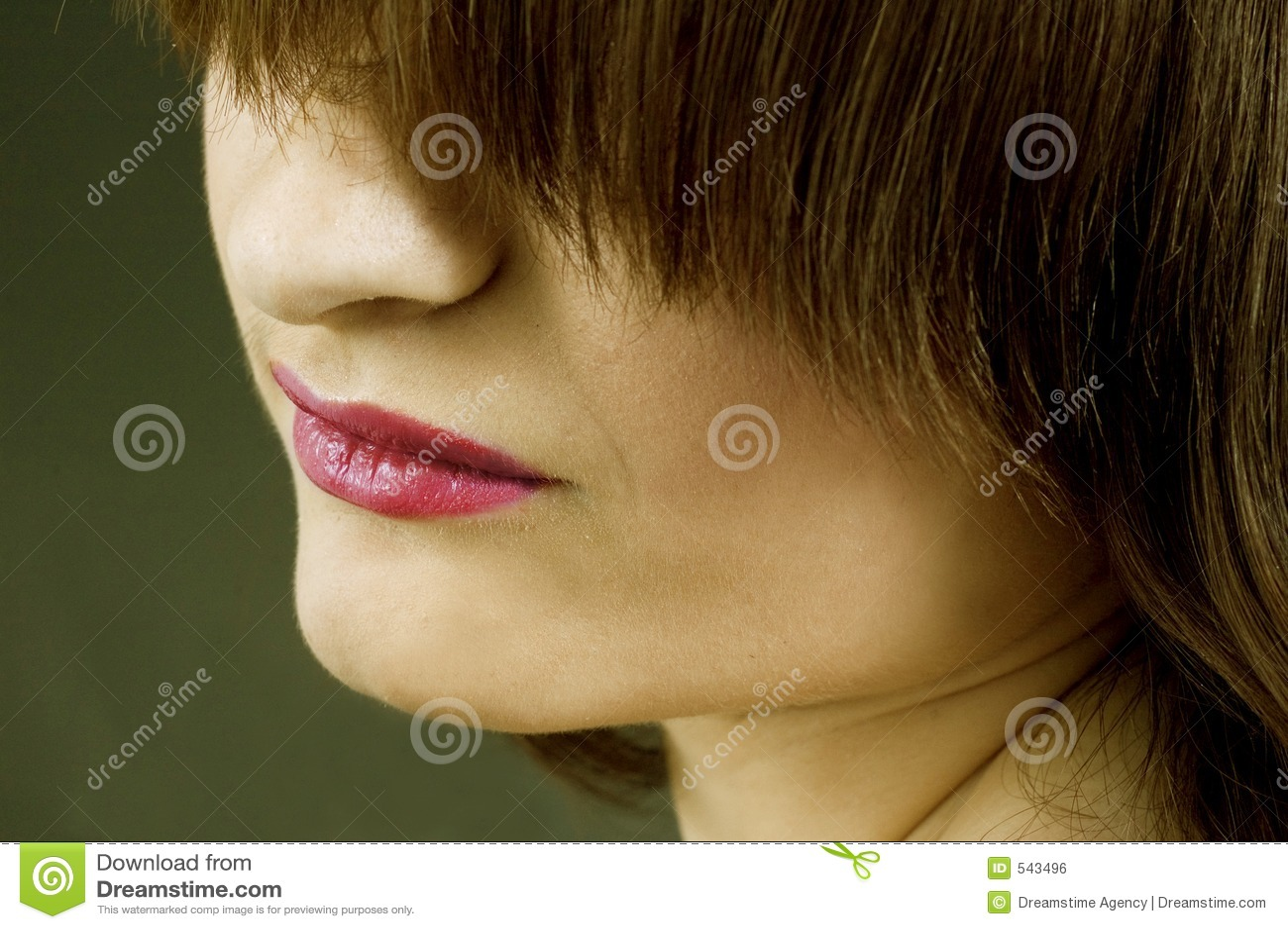 Download 屏蔽 库存照片. 图片 包括有 构成, beautifuler, 红色, 唇膏, 头发, 眼线膏, 鼻子, 乌贼属 - 543496