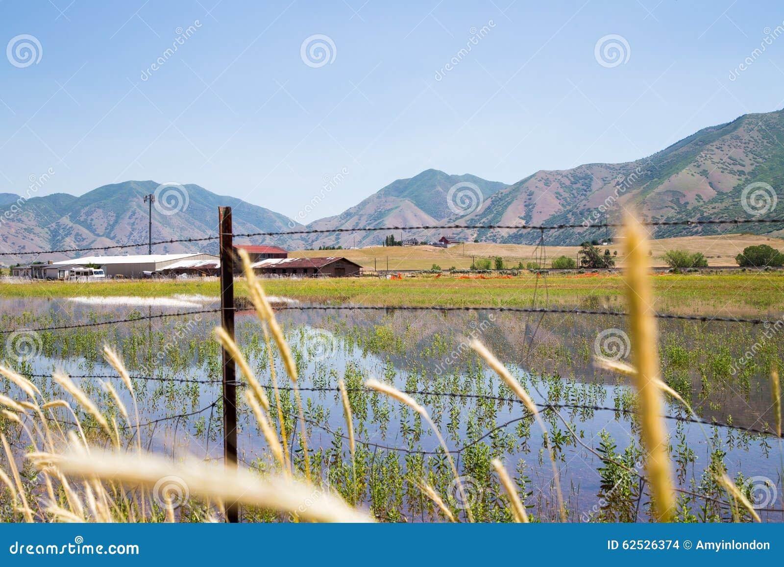 山反射犹他农场土地