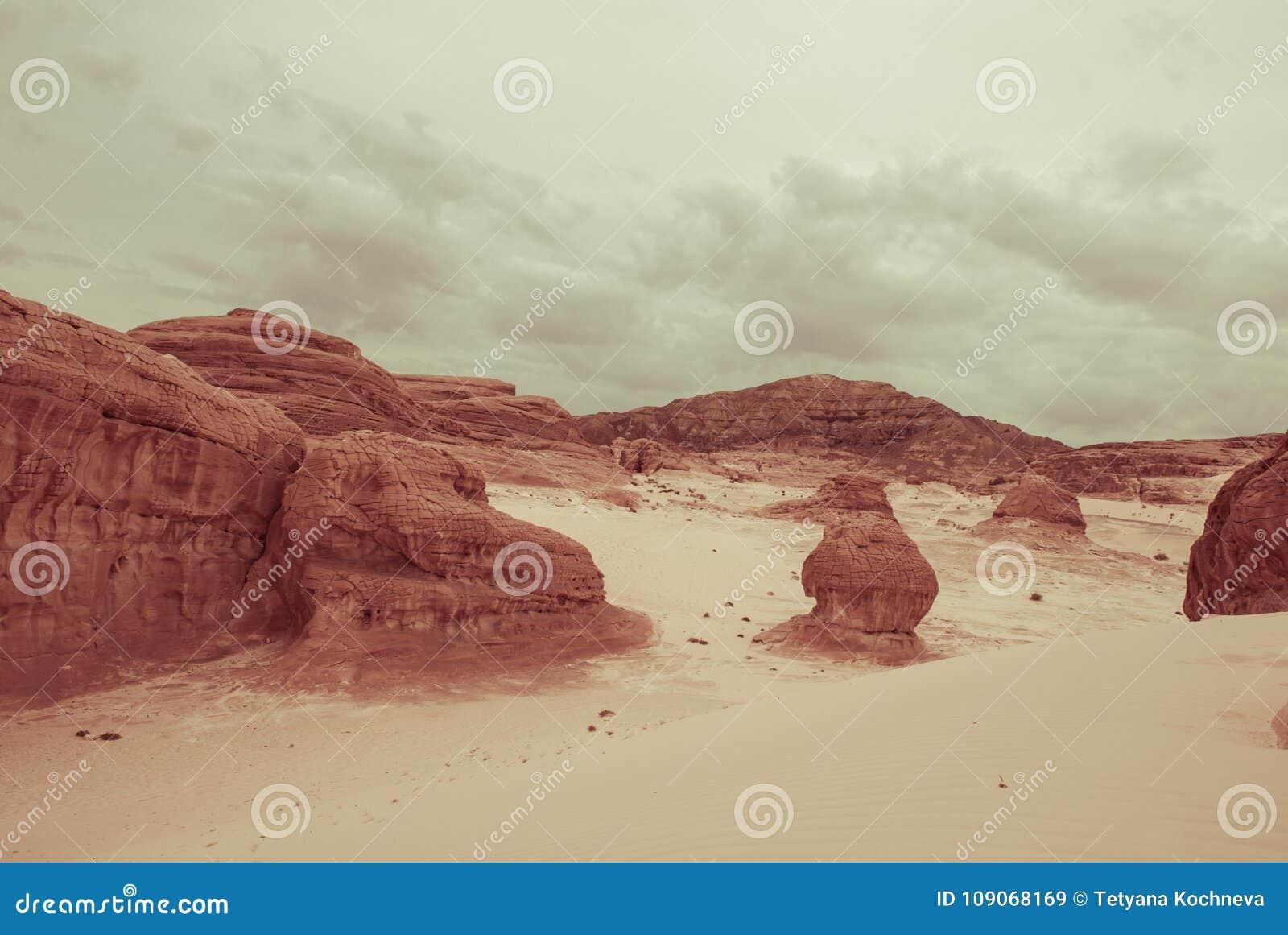山在西奈沙漠埃及