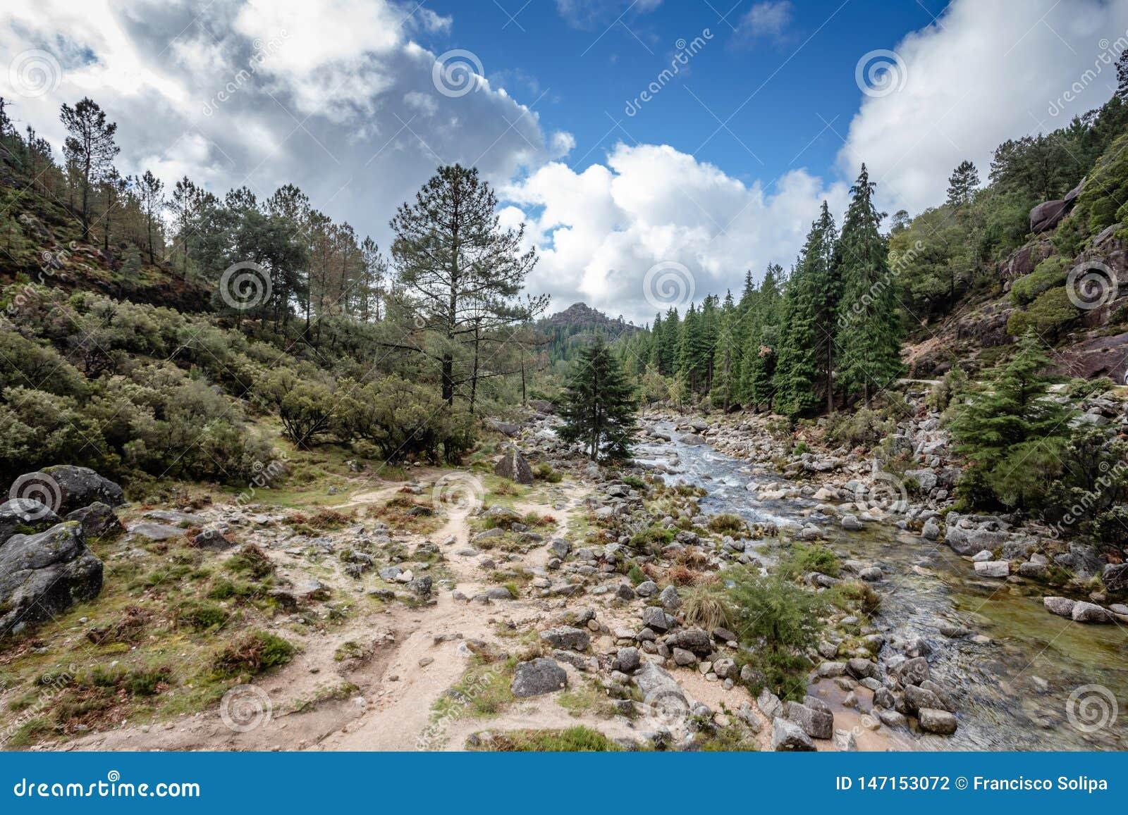 山小河在佩内达Geres,葡萄牙