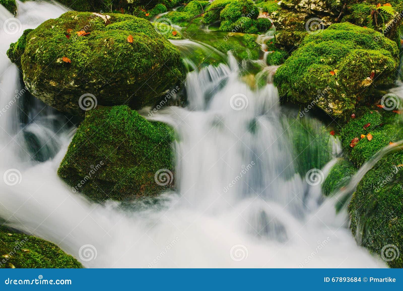 山小河细节用生苔岩石和透明的水