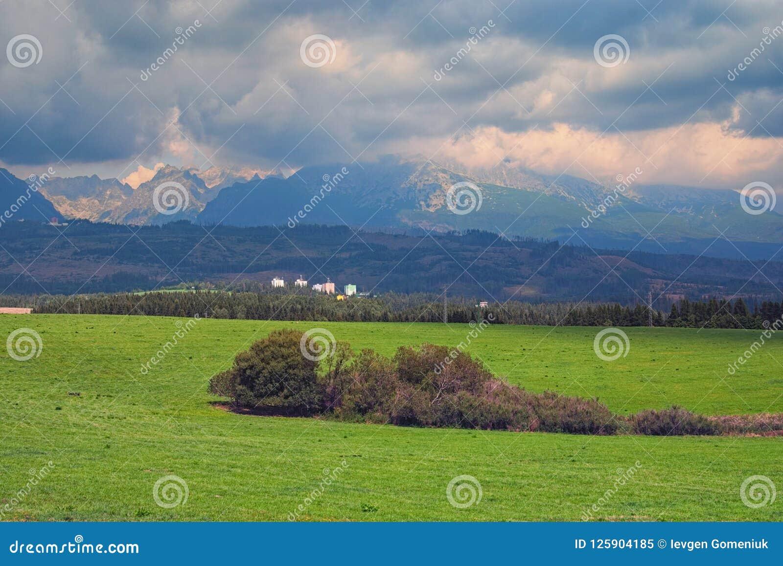 山峰和绿色草甸美丽的景色Tatra山夏天风景的,斯洛伐克