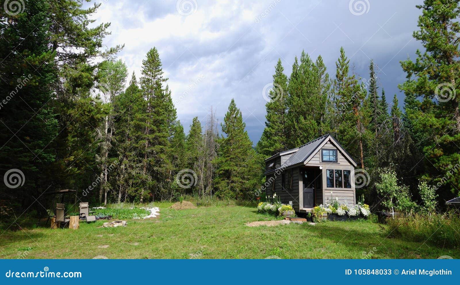 山的栅格微小的房子