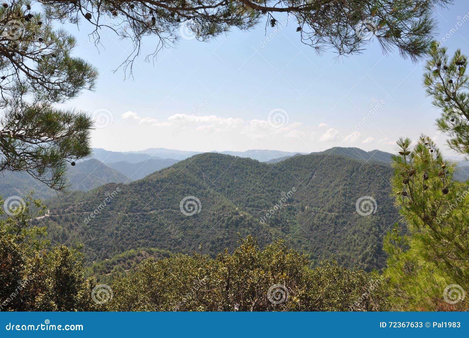 从山的视图