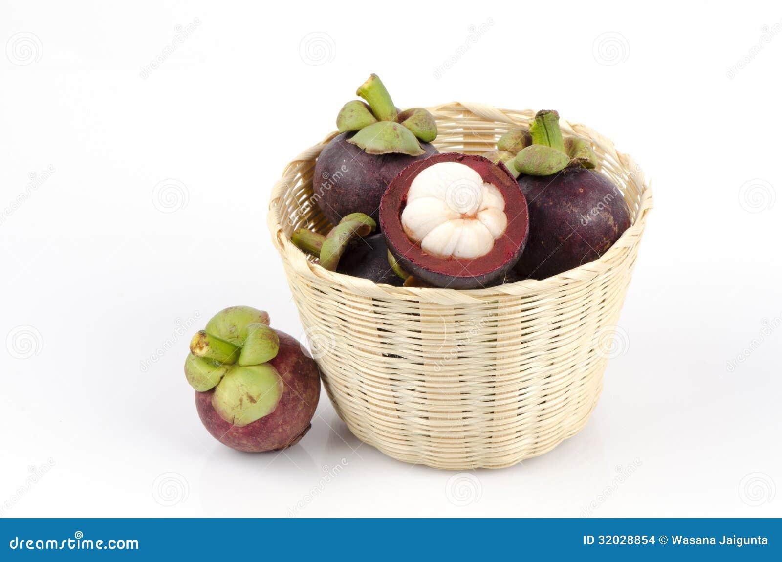 山竹藤黄(女王mangostanalinn.)王后的新语/果树世说果子优秀教学设计图片