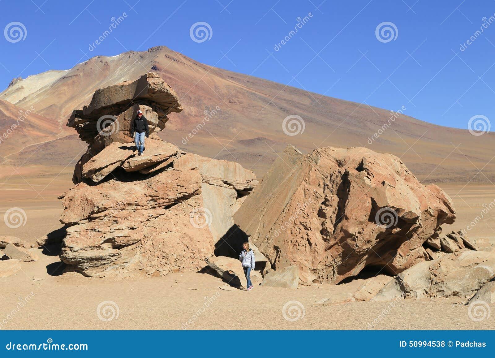 岩层在Uyuni,叫作Arbol的玻利维亚de彼德拉