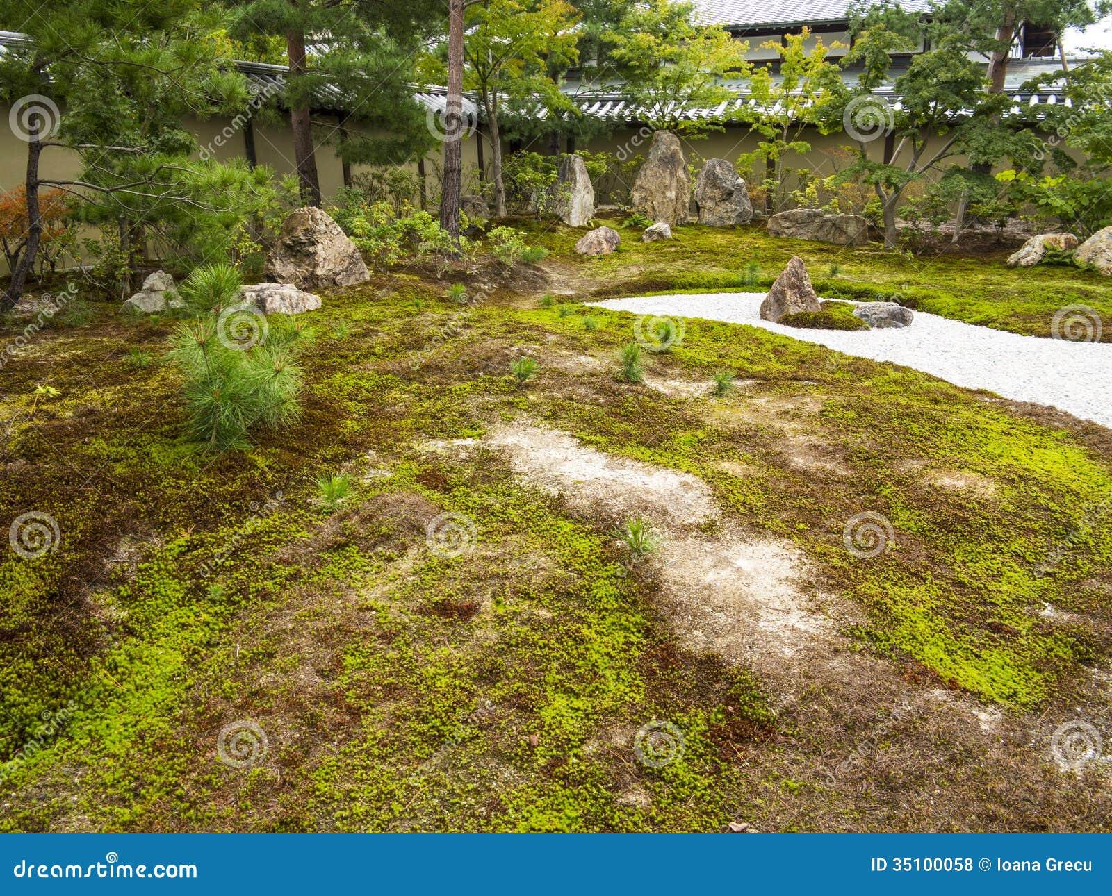 岩石和青苔庭院
