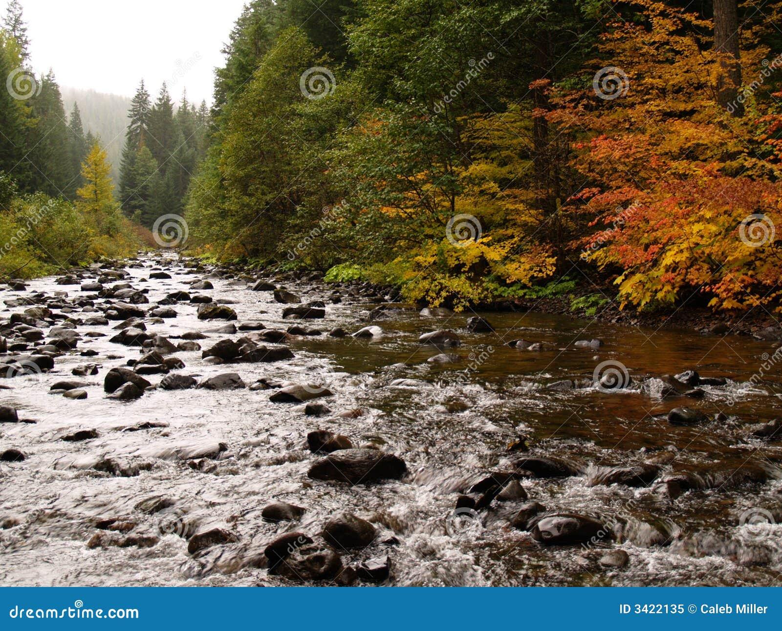 岩石大的河
