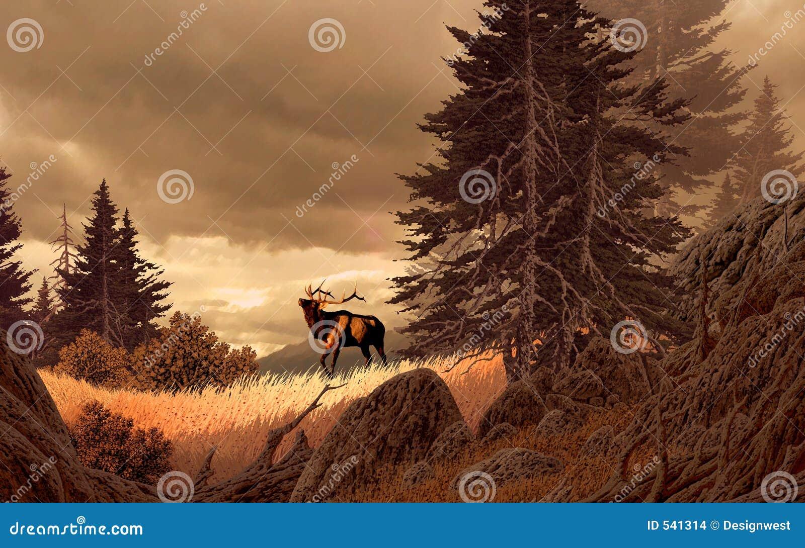 Download 岩石麋的山 库存例证. 插画 包括有 艺术, 横向, 野生生物, 西方, 原野, 西部, 户外, 杉木, 马鹿 - 541314
