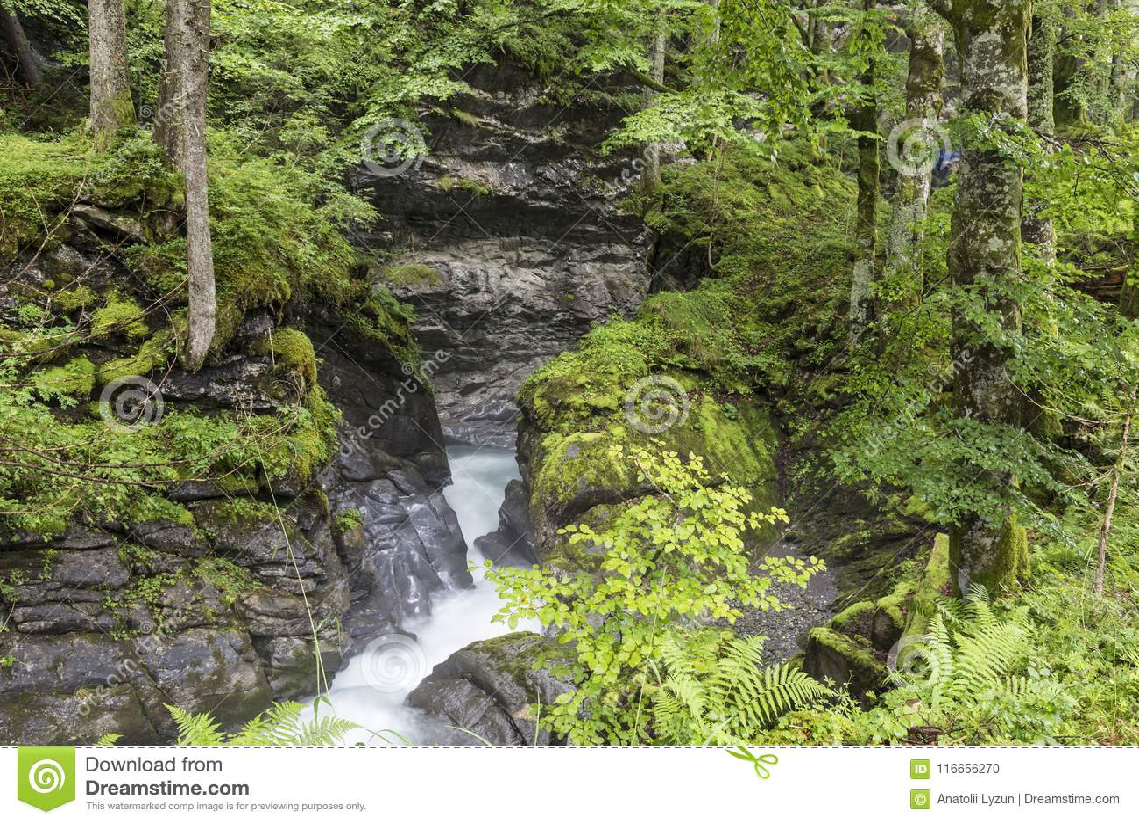 峡谷的快速的山河