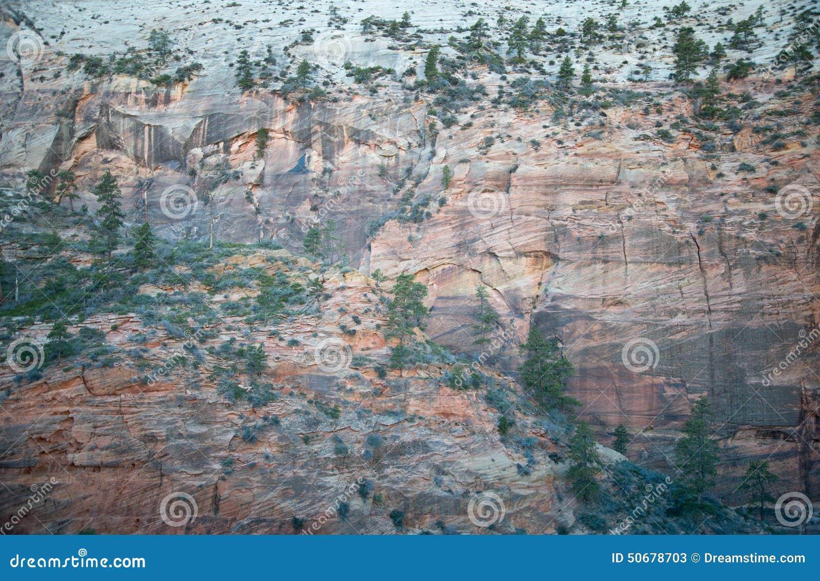 Download 峭壁 库存图片. 图片 包括有 标题, ,并且, zion, 下来, 峭壁, 峡谷, 线索, 结构树, 高涨 - 50678703