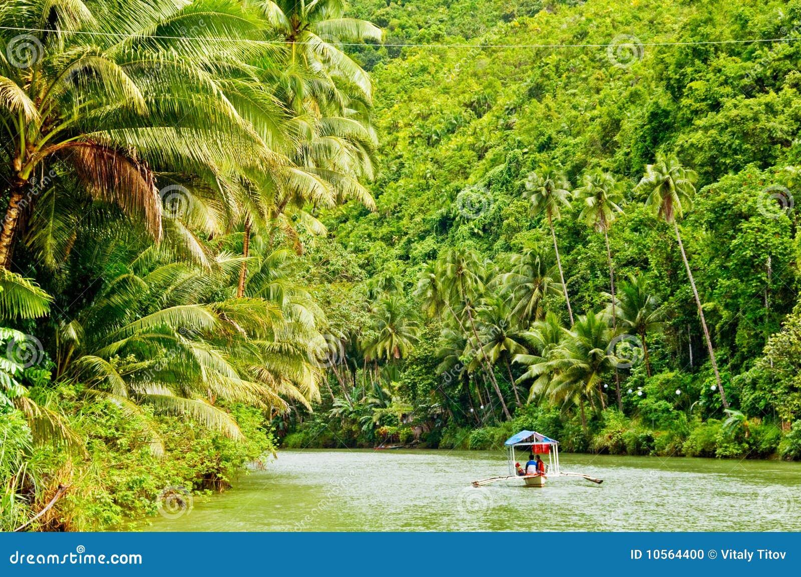 巡航雨林河