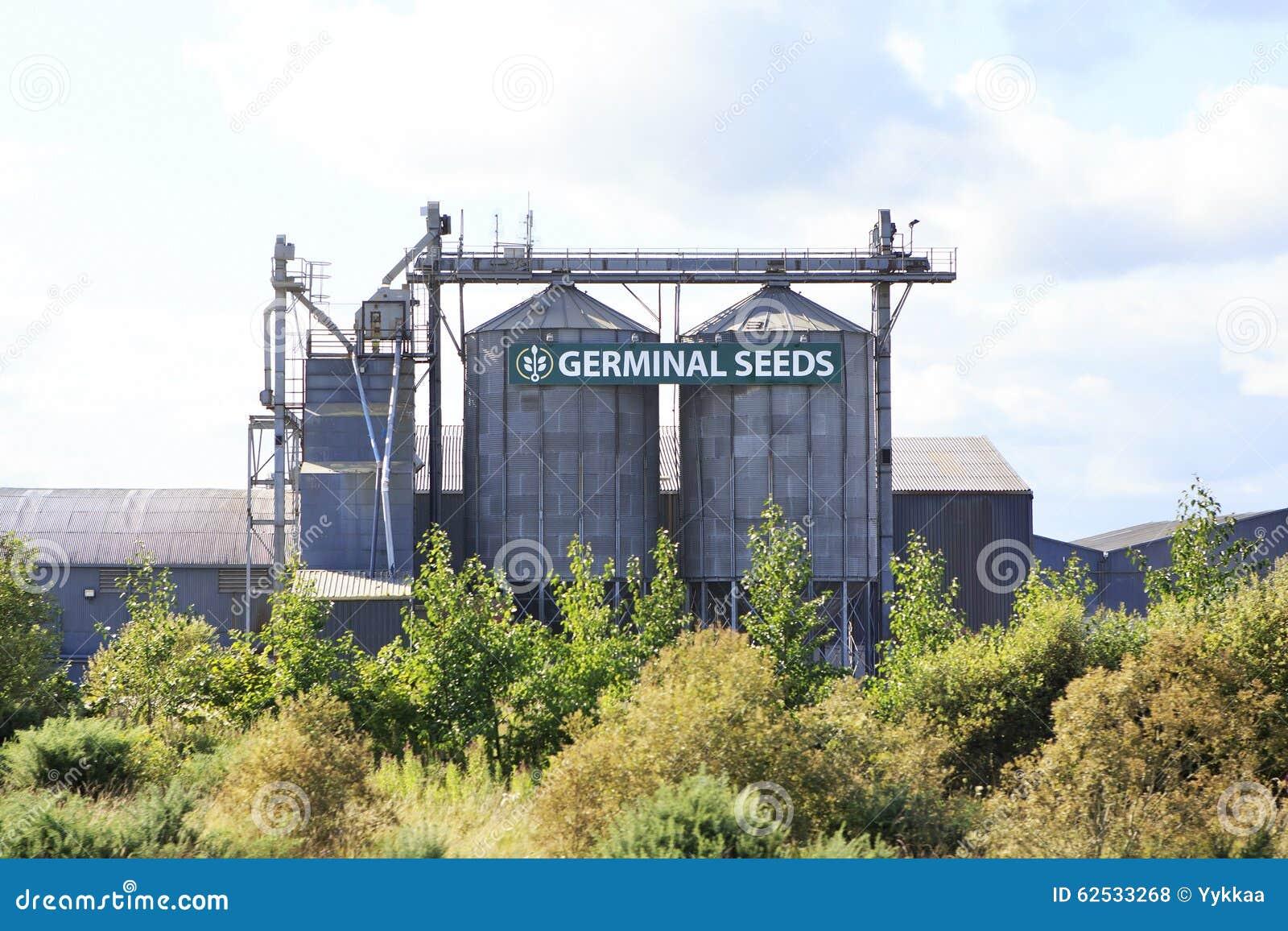 工厂初期种子在爱尔兰