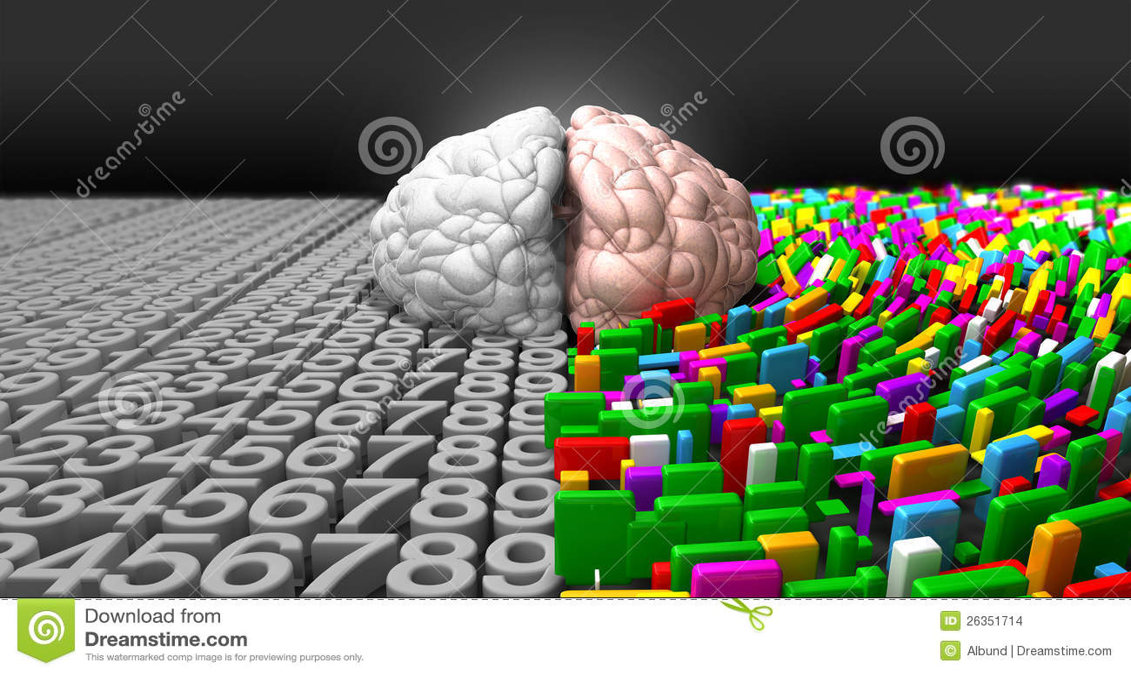 一个性色_头脑和右侧的左边的典型的脑子表示一个分散的,创造性和五颜六色的端.