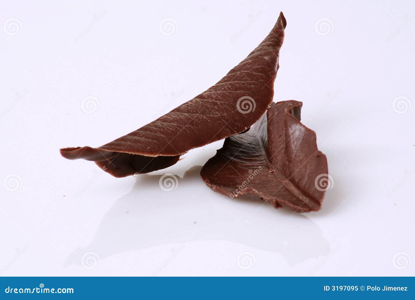 巧克力叶子