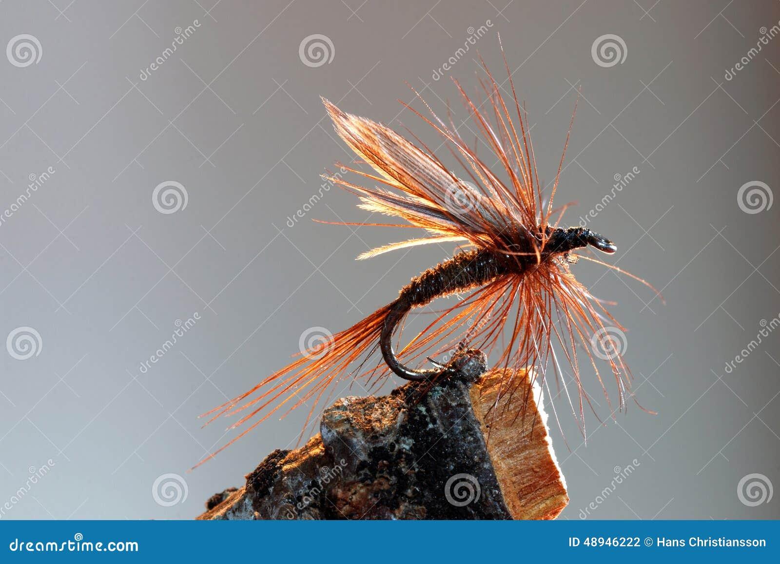 布朗用假蝇钓鱼诱剂