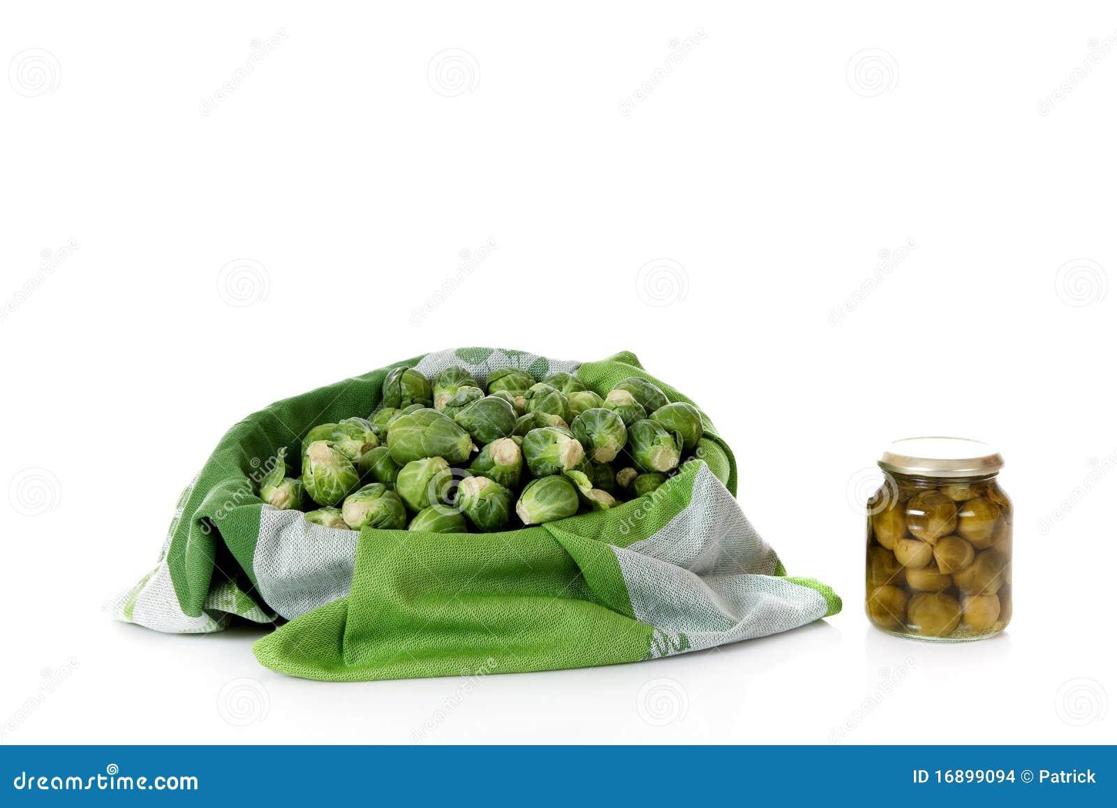 布鲁塞尔装新鲜的新芽于罐中与