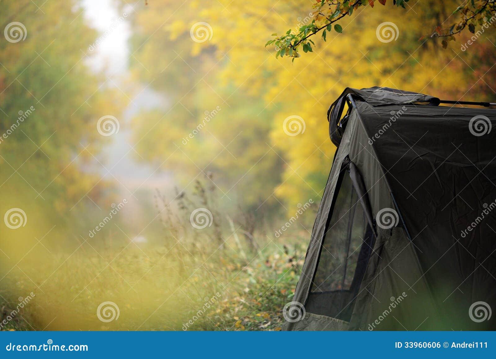 帐篷在森林
