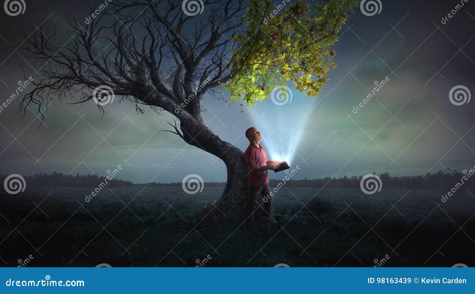 带来生活给树