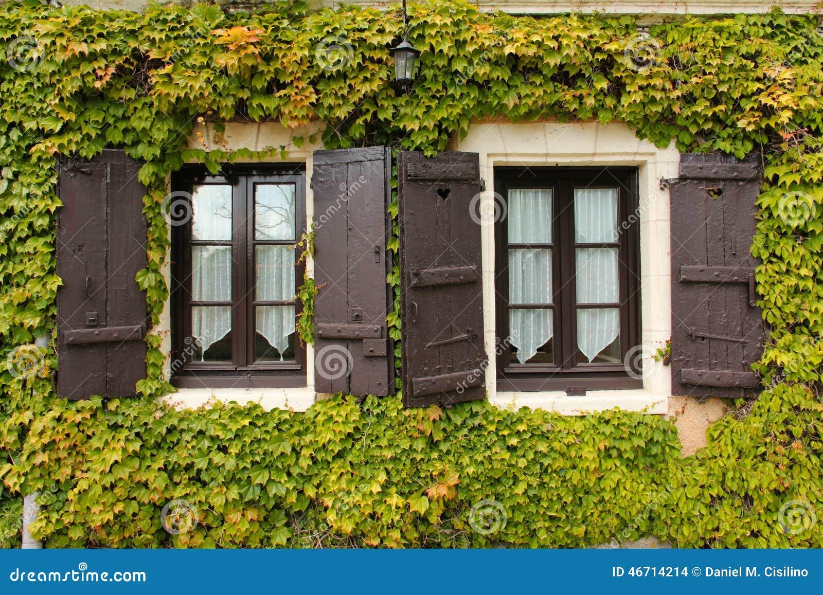 常春藤围拢的双窗口 Chenonceau 法国