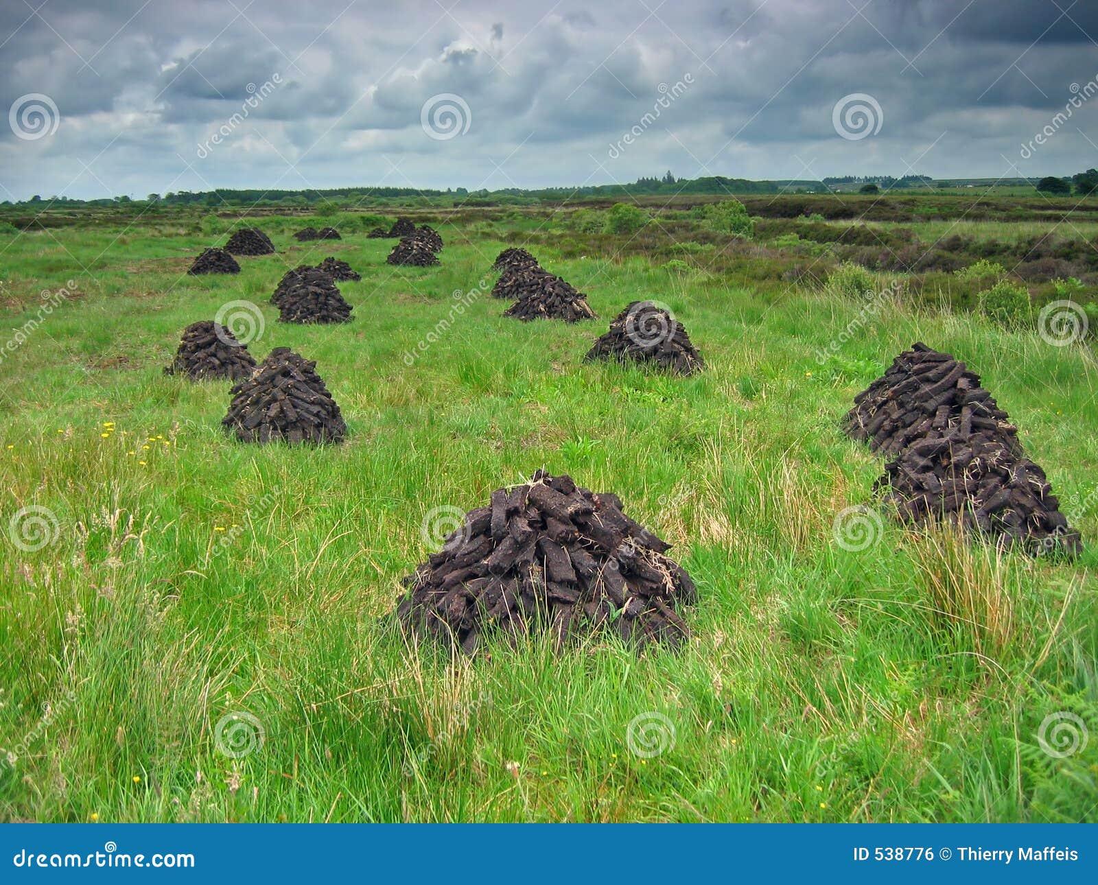 Download 干燥泥煤 库存照片. 图片 包括有 威胁, 农田, 肥沃, 农村, bogart, 云彩, 乡下, 底土, 干燥 - 538776