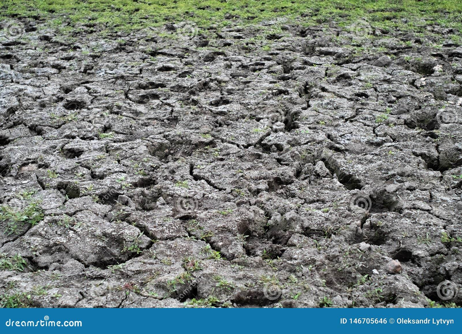 干燥破裂的土壤顶视图与草的
