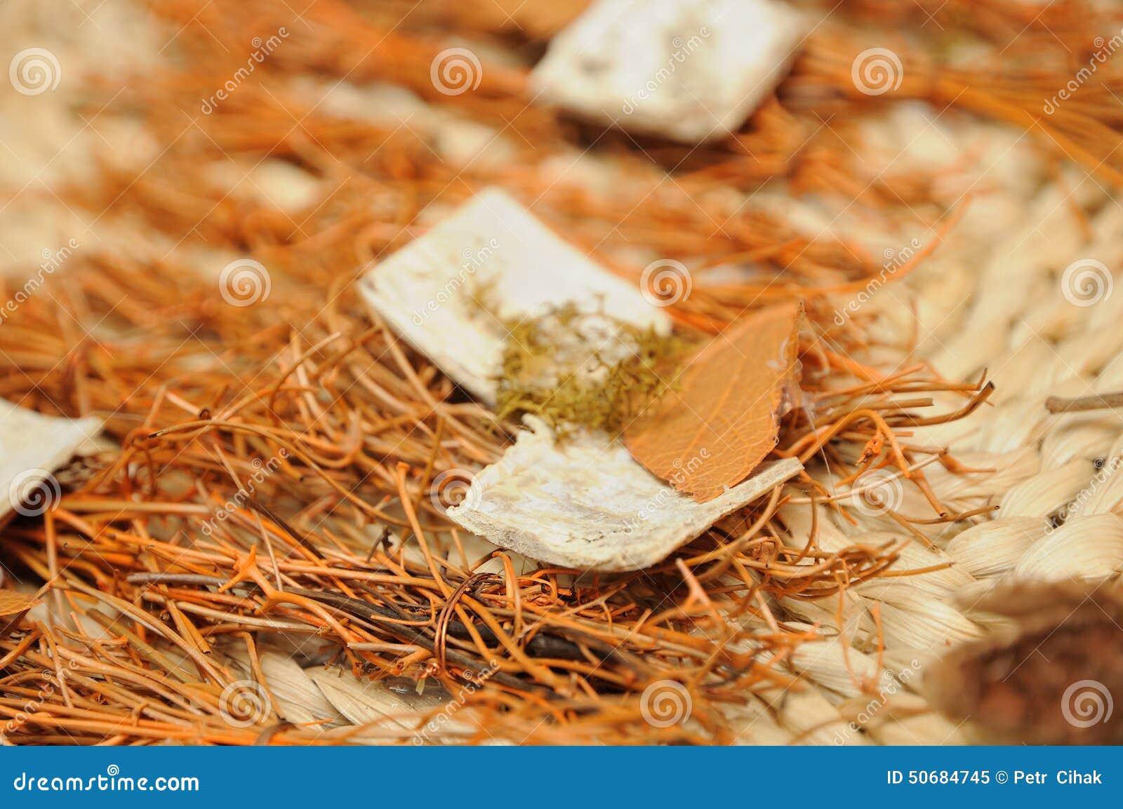 Download 干燥草本背景 库存图片. 图片 包括有 部分, 草本, 本质, 外皮, 自然, 大麦, 牌照, 背包, 干燥 - 50684745