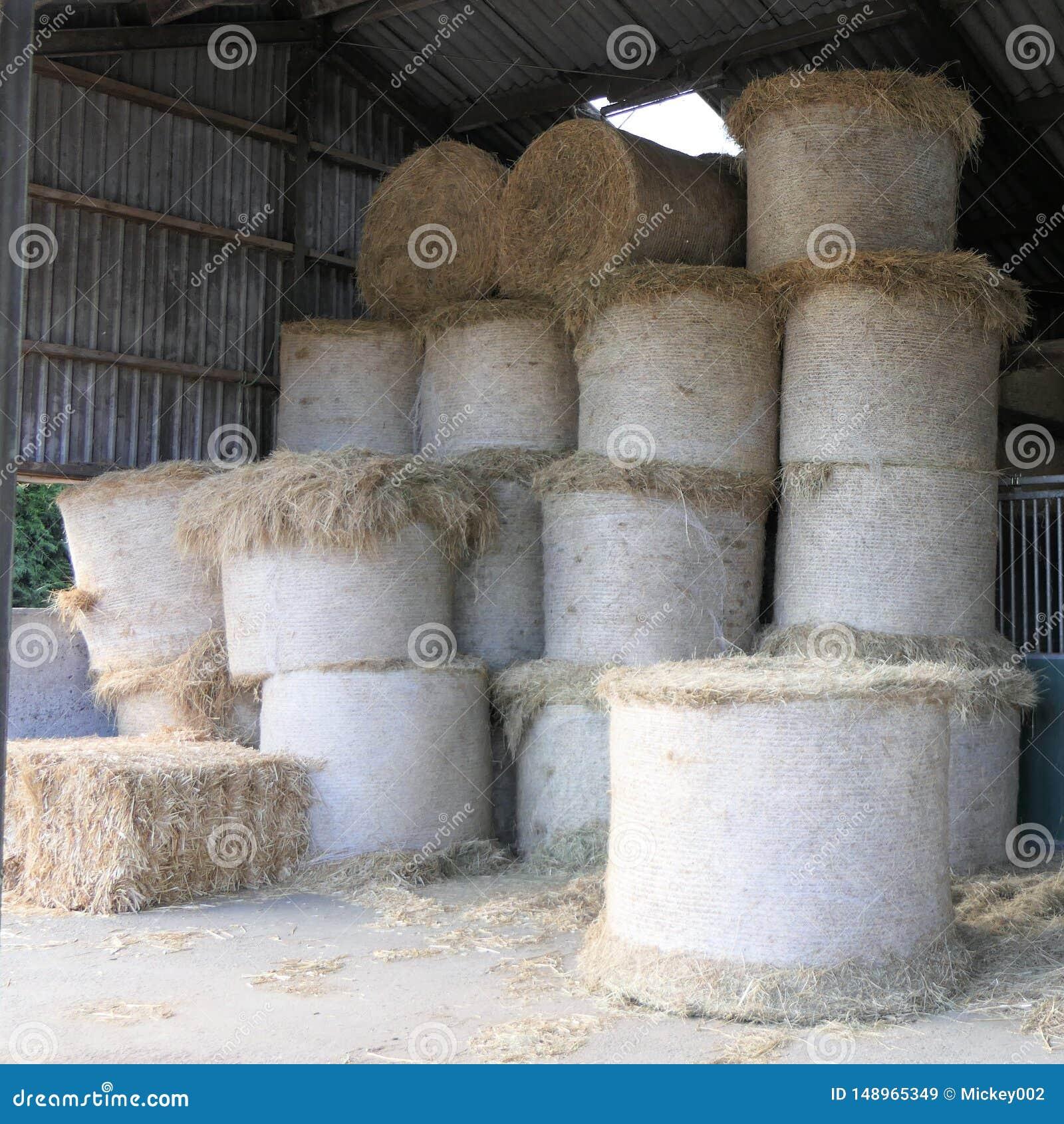 干草被堆的卷大包