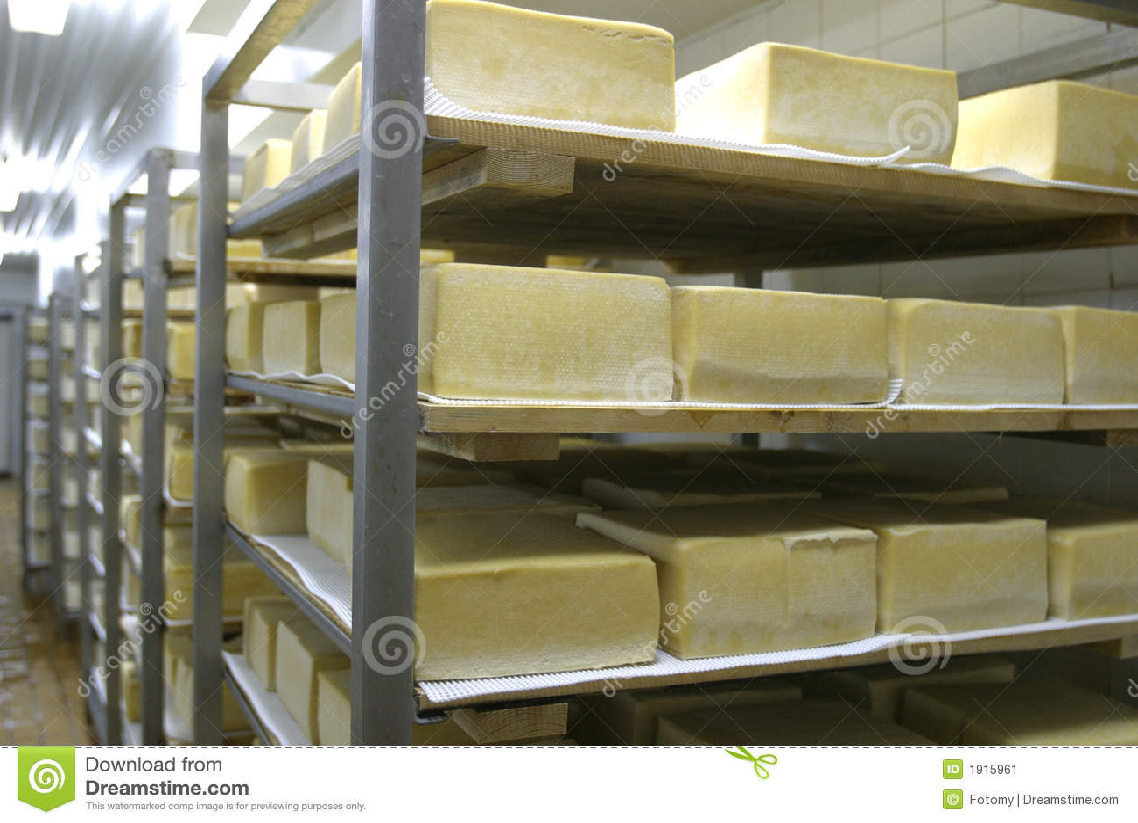 干酪牛奶店存贮