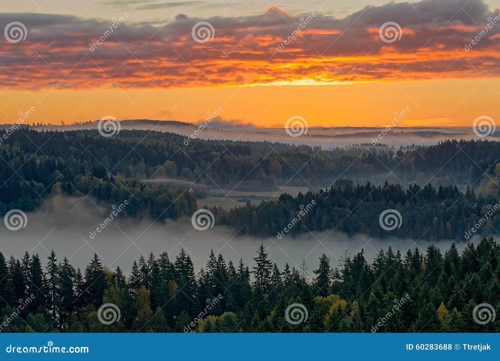 平安的乡下风景早晨