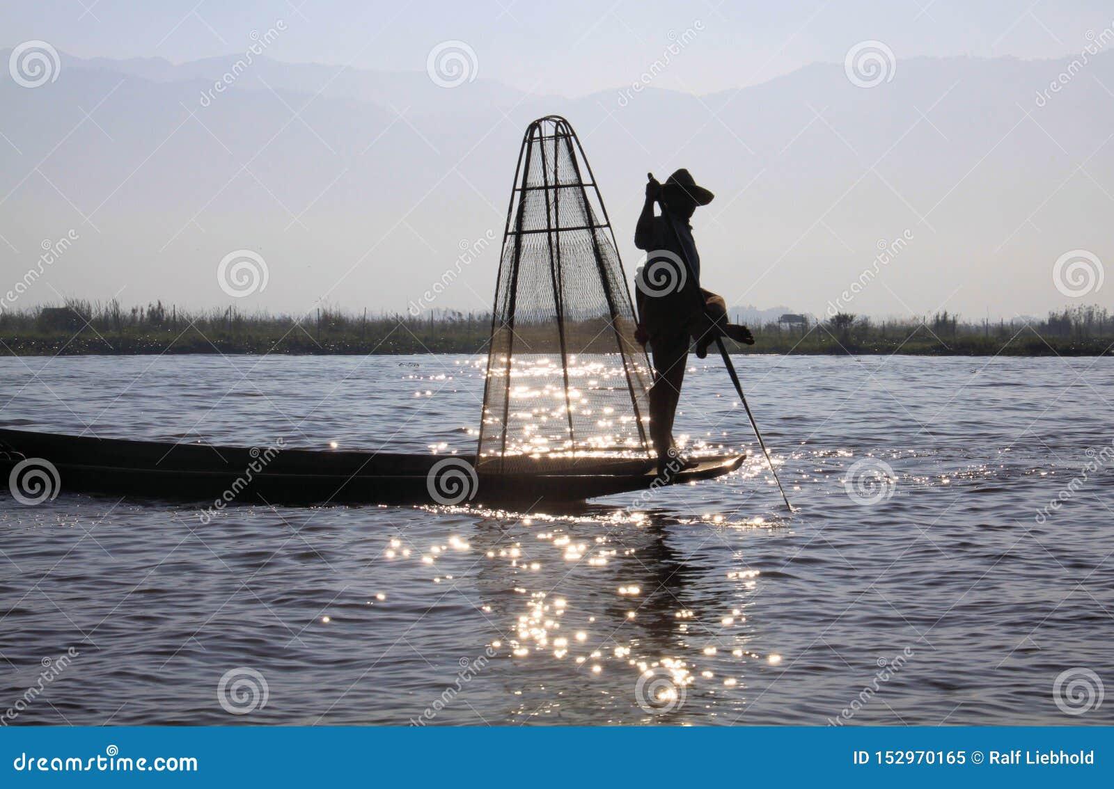 平衡在他的小船和荡桨用他的在Inle湖,缅甸的饲料的传统渔夫剪影