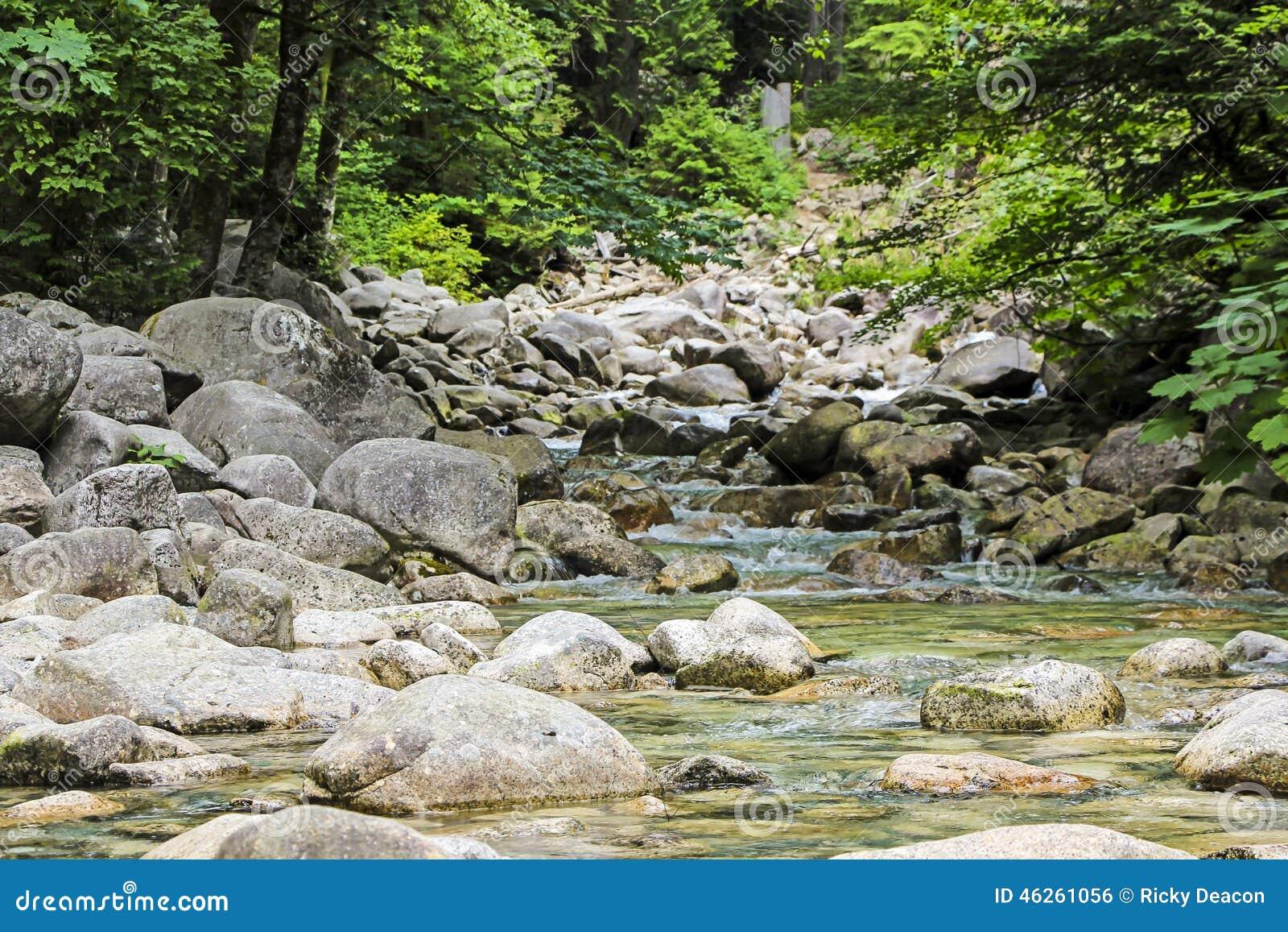 平静的河和石头