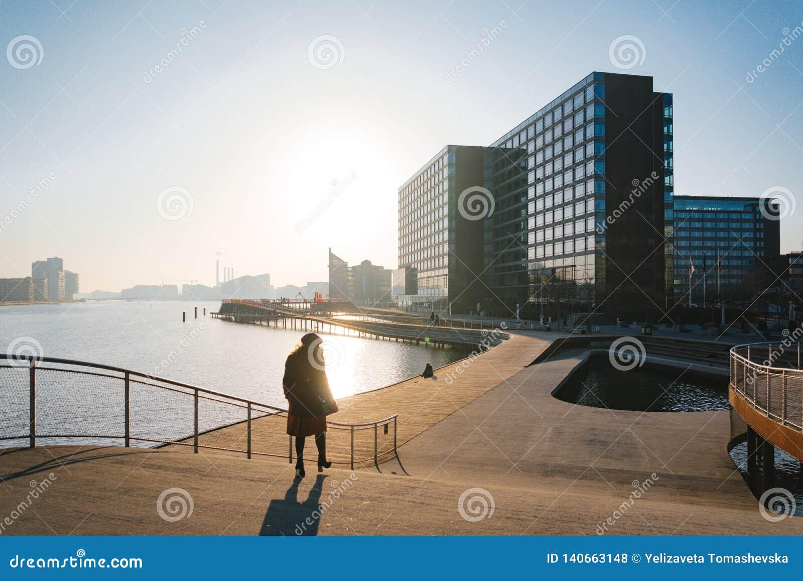 2019年2月18日 哥本哈根,丹麦  木堤防在河附近的Kalvebod布鲁日 都市风景在晴朗的冬天